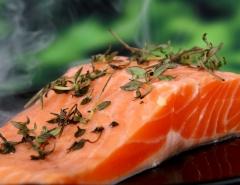 salmon photo
